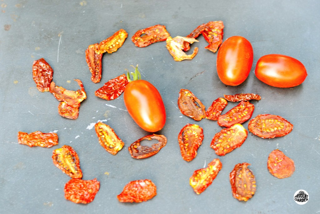 dryingtomatoes