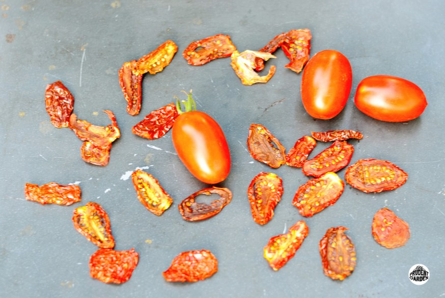 Preserving the Harvest: Drying Food