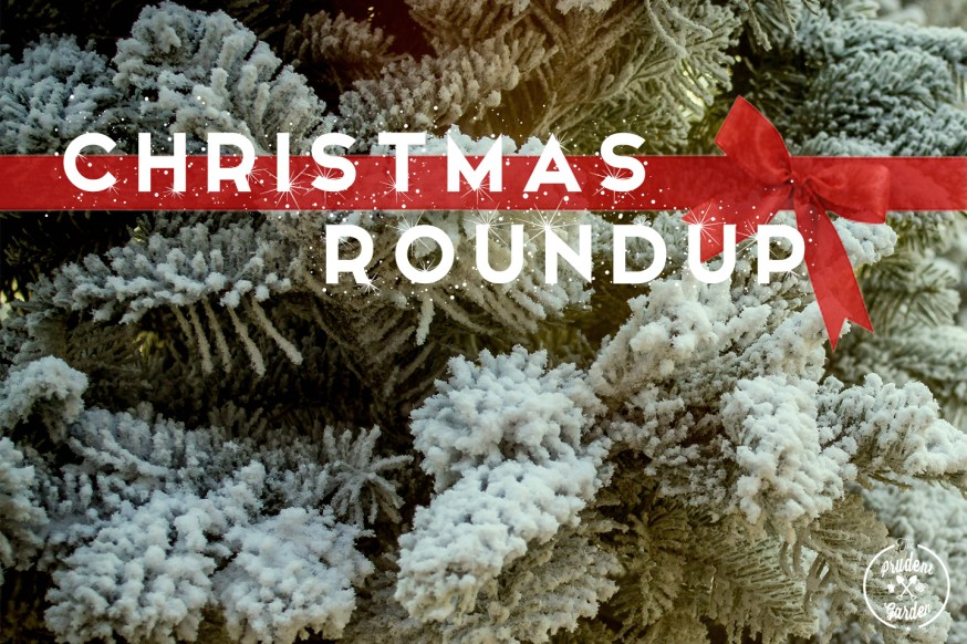 Here is a roundup of holiday related articles for Christmas related DIY projects, holiday decor and garden gifts.