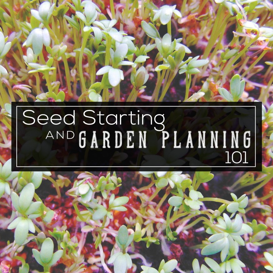 Seed and Garden Planning 101