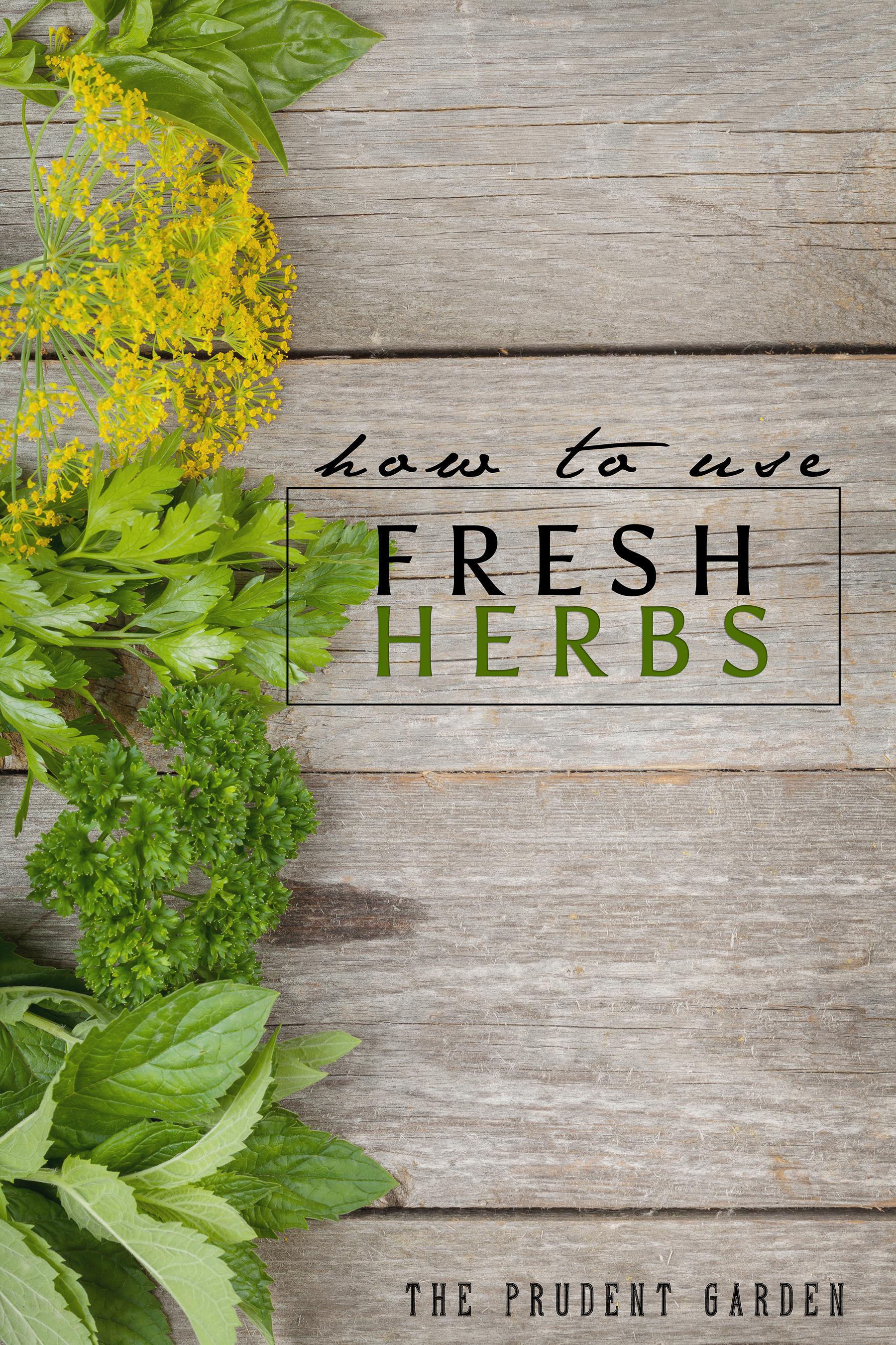 Fresh Herb Garden : How to use fresh herbs