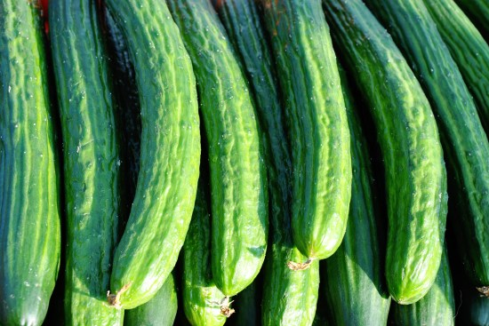 Choosing Cucumbers For Your Garden