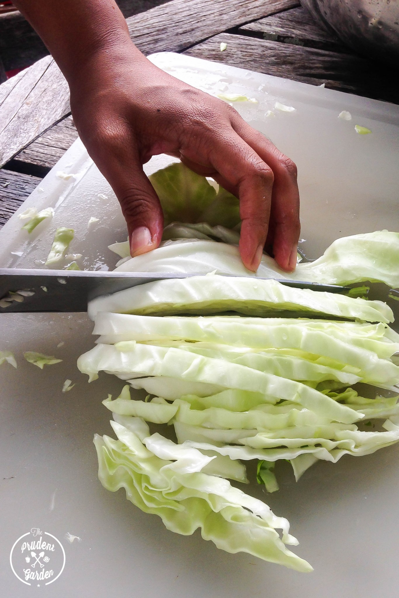 how to cut cabbage for boiling