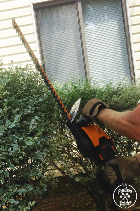 "WORX Tools Review|56V MaxLithium Cordless 24"" Hedge Trimmer"