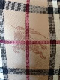 Burberry Imitation Scarf