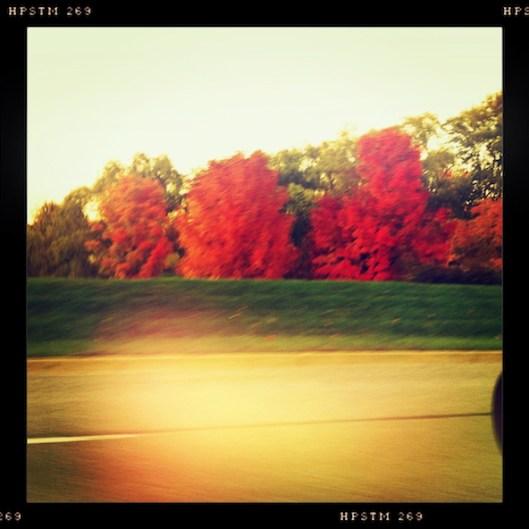 Michigan Autumn, Michigan Color Season