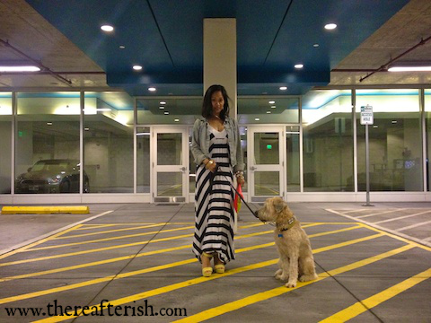 thereafterish, ootd, striped maxi dress, ella moss dress, wheaten terrier, hawaii street style