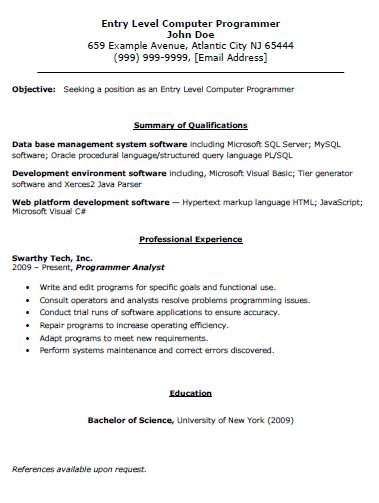 functional resume template for information technology - Information Technology Resume Template