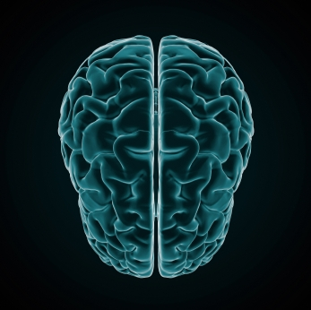 Your Brain on Business: How to Tap Your Full Potential
