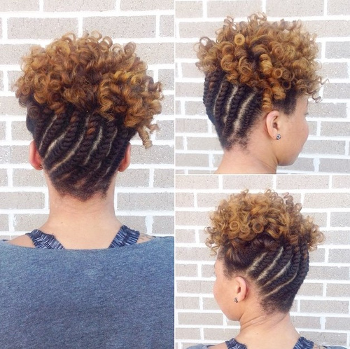 Pics For Gt Cornrow Updo With Curls