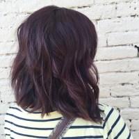 Dark Mahogany Violet Hair Color | www.pixshark.com ...