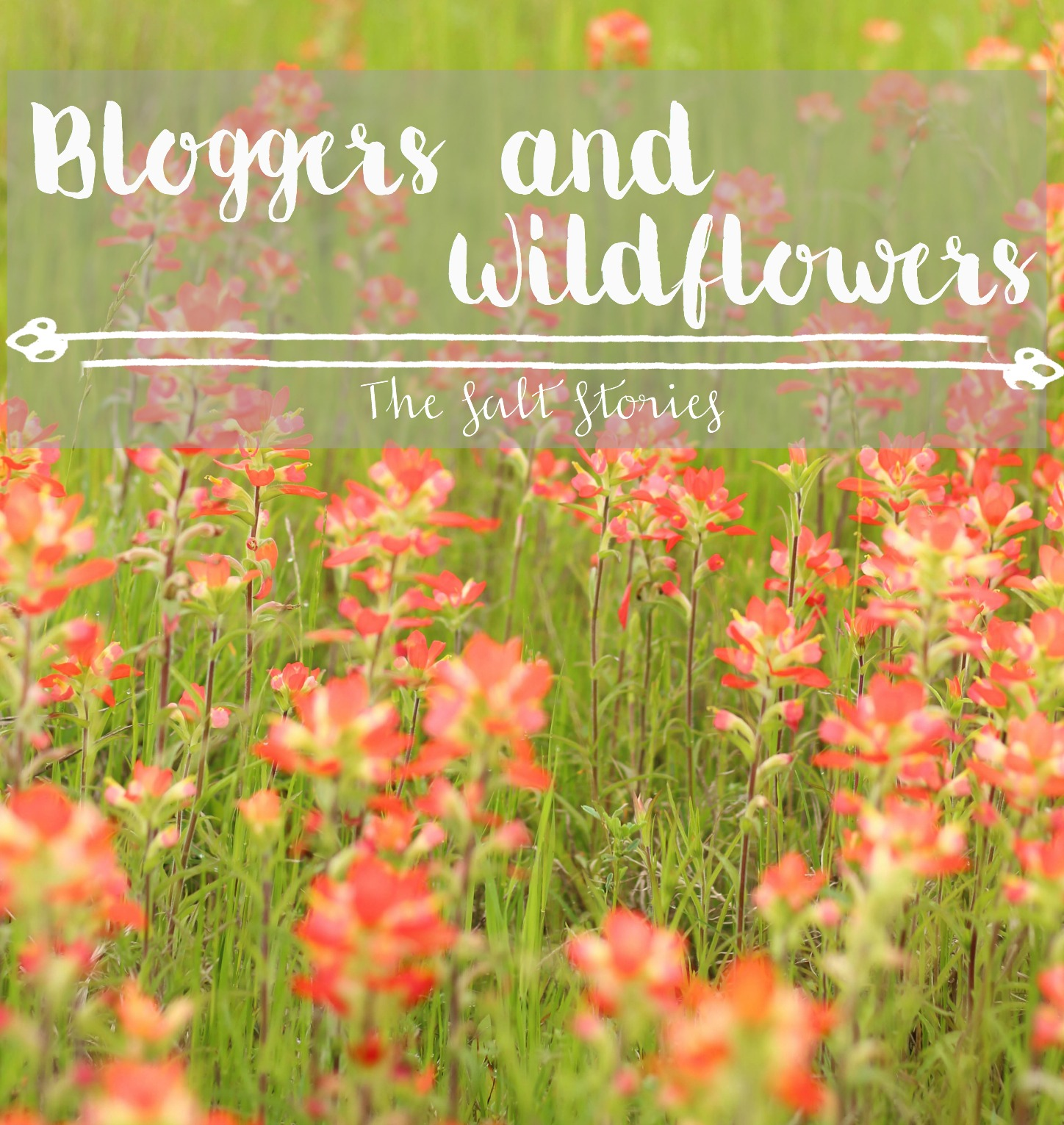 bloggers-wildflowers-title