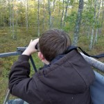 Scanning for deer