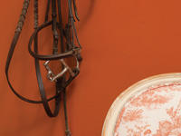 Benjamin Moore Tandoori, from the Colour Stories full spectrum paint collection