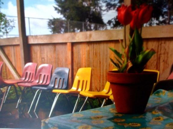photo 10 CaliforniaDreamin'   The Sche Report / Margaret Sche