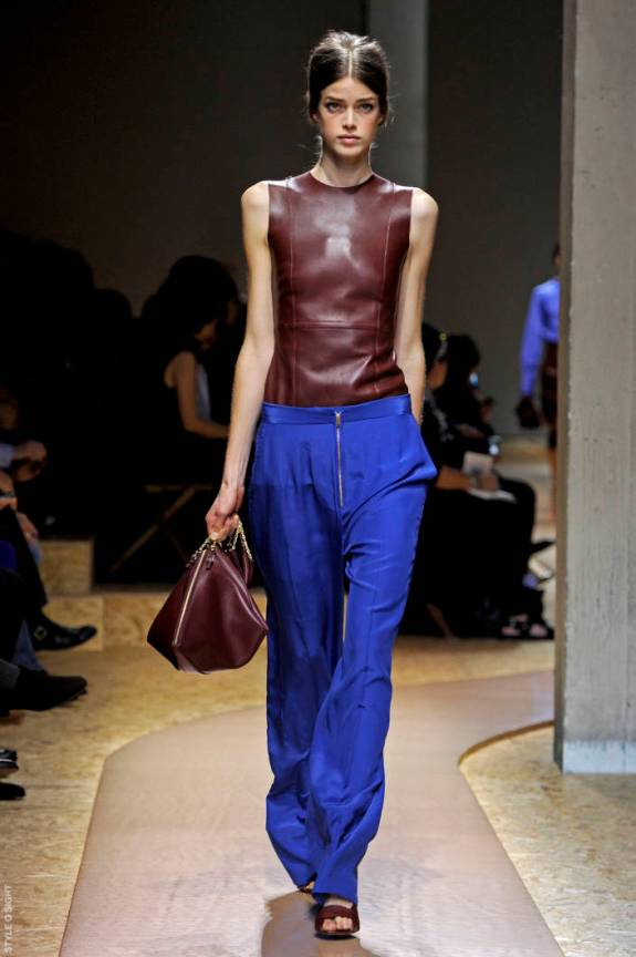 cel ps11 034 TOP 5 PICKS SPRING/SUMMER 2011:  PARIS   The Sche Report / Margaret Sche