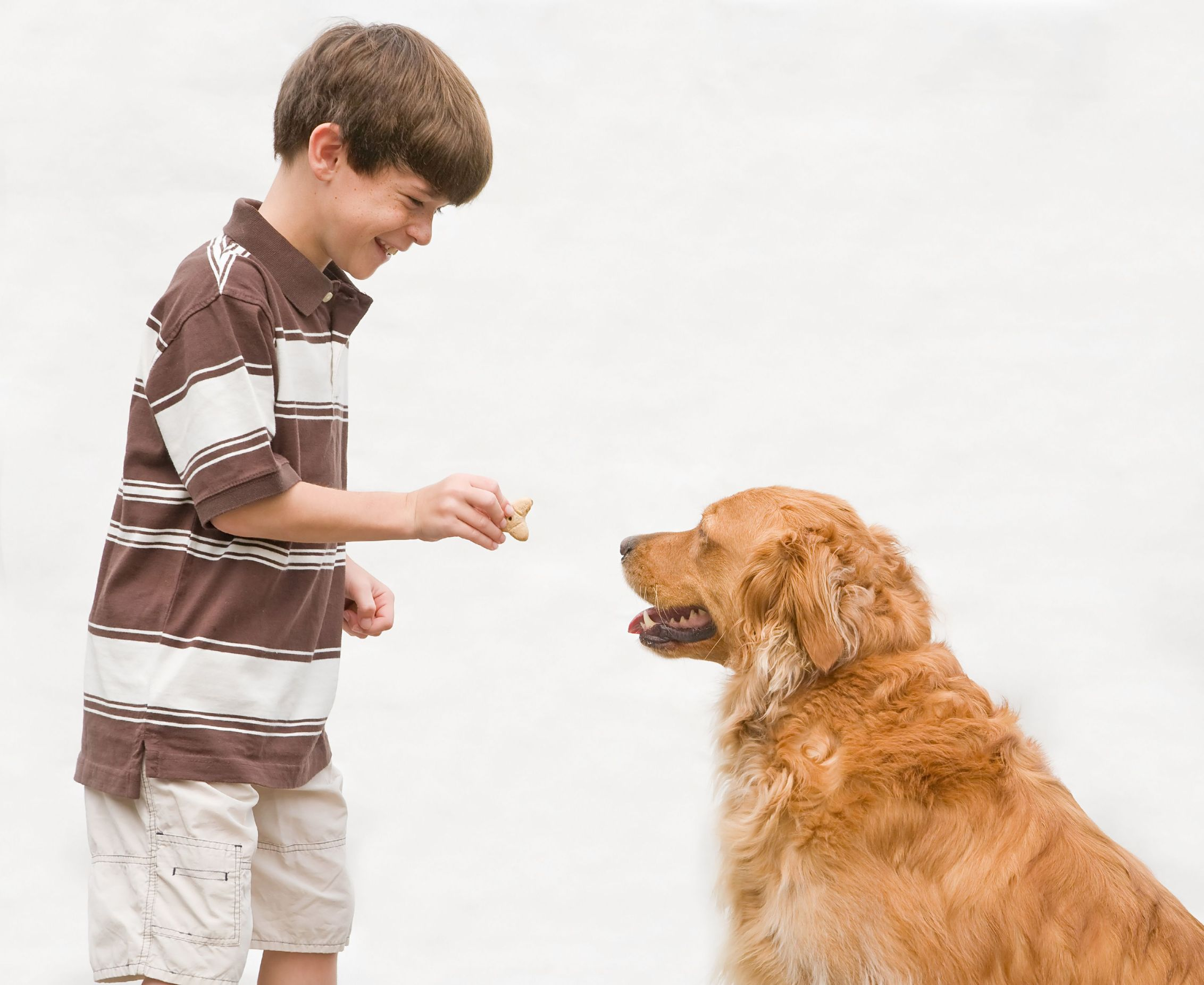 Fullsize Of Treat A Dog