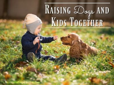 Raising Dogs and Kids Together