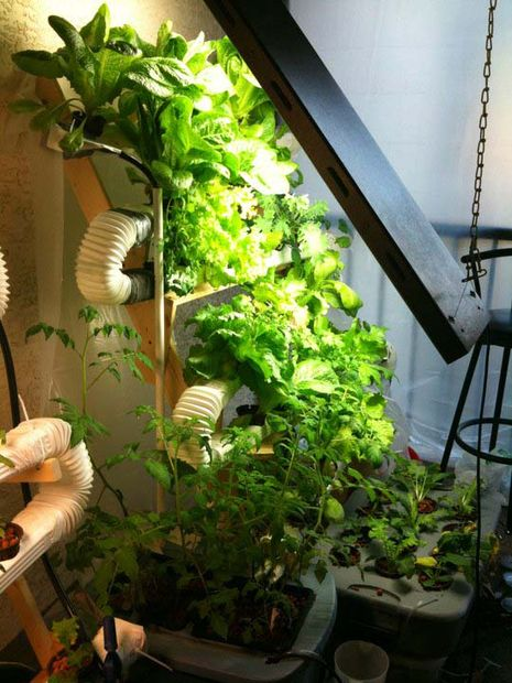 Great Hydroponics Ideas But Garden Culture Magazine 12 Innovative Diy Hydroponics Systems To Grow Soil Less