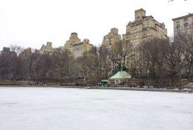 Getaway | NYC