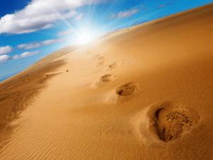 footprintsindesertsand-long-goodbye