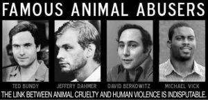 Many criminals have a history of animal abuse including Ted Bundy, Jeffery Dahmer and David Berkowitz. (Photo courtesy of animalliberationfront.com)