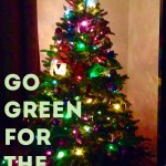 Three Steps for a Greener Holiday Season