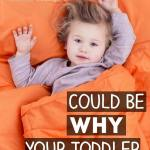 Why Doesn't My Toddler Sleep Through the Night?