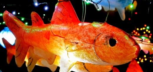Seoul, Korea: Cheonggyecheon Stream Lantern Festival 2011