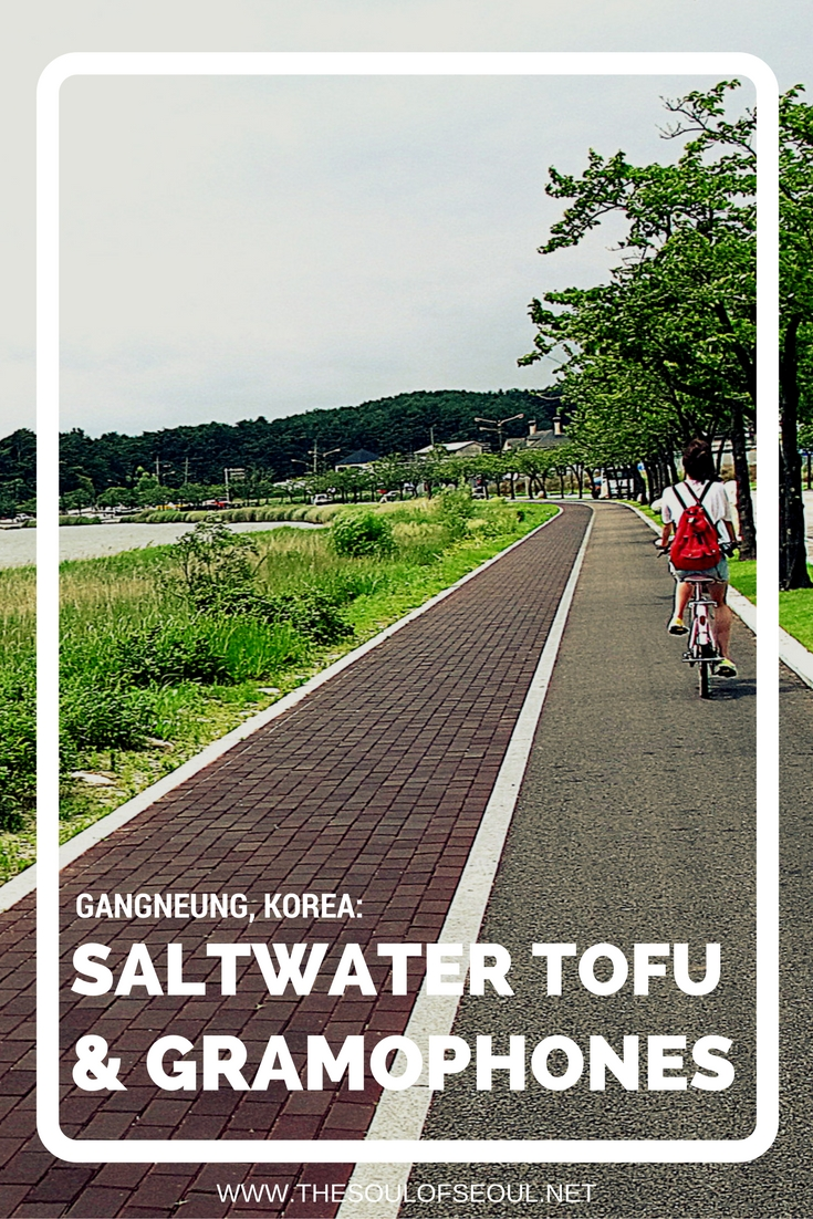 Gangneung, Korea: Saltwater Tofu & Gramophones: Gangneung, Korea is famous for beautiful beaches and for salt water tofu and it's a must eat. Also in the area is a random but cool gramophone museum and bike rental for some fun too. The perfect weekend getaway in Korea.