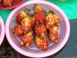 Jagalchi Fish Market 2009