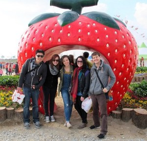 Nonsan, Strawberry Festival, Nonsan, Korea
