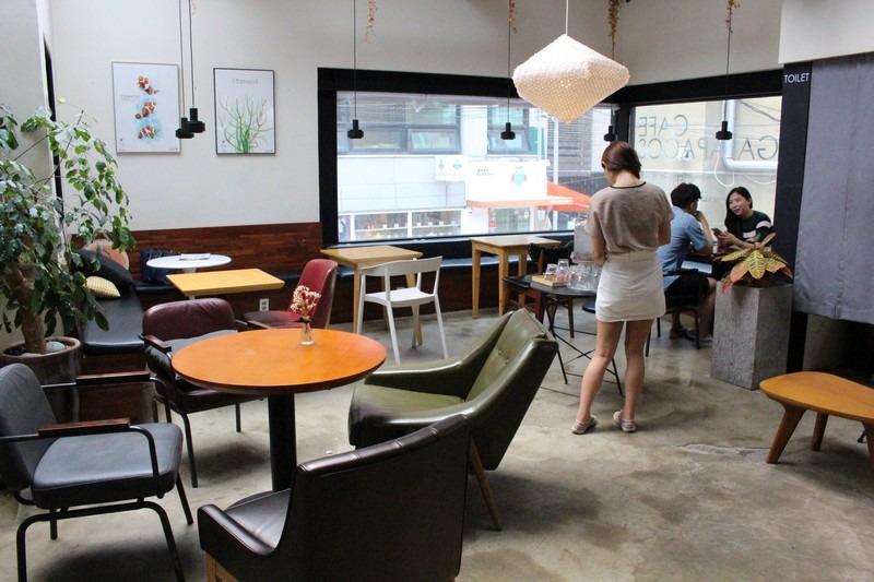 The Galapagos Cafe, Hongdae, Seoul, Korea