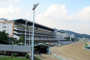 Gwacheon Horse Racing Track, Let's Run Park, Seoul, Korea