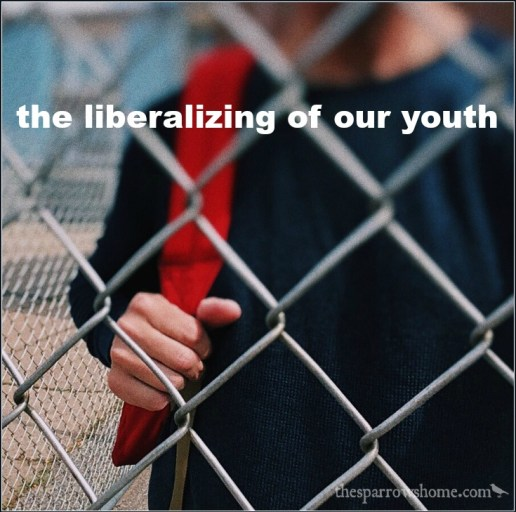 Are colleges liberalizing youth in America?