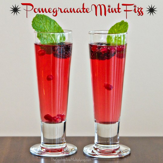 The Spohrs Are Multiplying Pomegranate Mint Fizz
