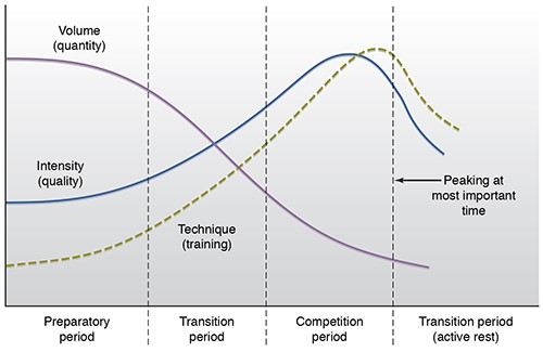 Figure 1 Matveyev Model of Periodization