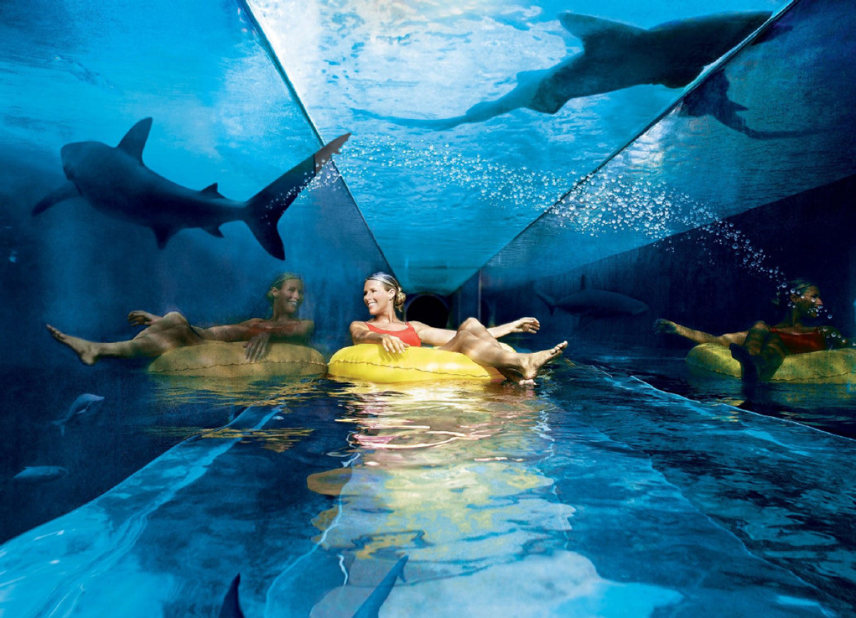 Hotel Atlantis In The Bahamas Fare Deals Make It A December To Remember In The Bahamas