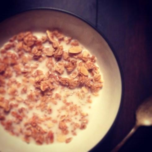 granola_cereal_2_blog
