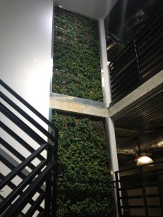 Really cool vertical plant wall