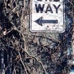 "Glimpses: ""One Way"""