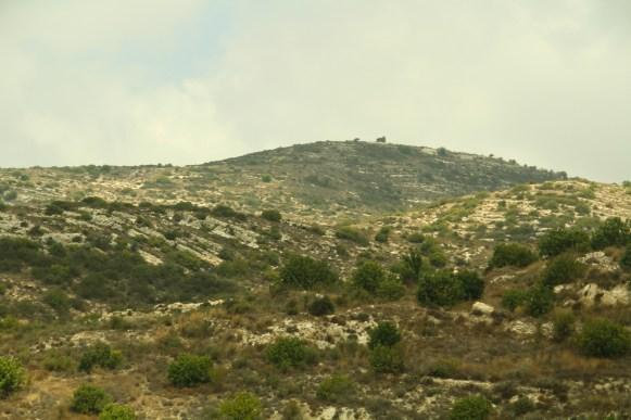 The Arid Scrubland of Cyprus