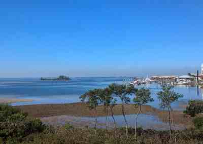New Waterfront Condos Westshore Yacht Club Casa Bahia