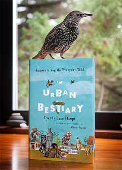 Urban Bestiary cover