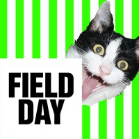 FIELD DAY 2014| FESTIVAL PREVIEW