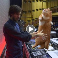PANTHA DU PRINCE AND THE BELL LABORATORY | ABLETON ARTIST MOVIES