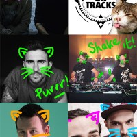 2014 INTERVIEW PICKS | TECHNO KITTEN FOR A DAY