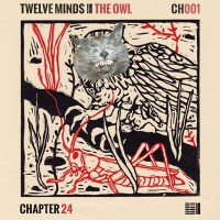 TWELVE MINDS | THE OWL EP (CHAPTER 24 RECORDS)