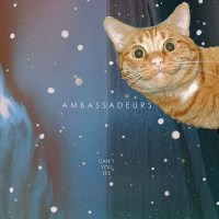 AMBASSADEURS | MY WAY
