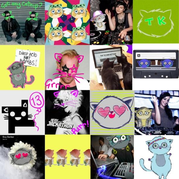 kitten artwork montage